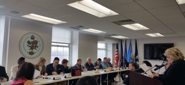 Communities Present Priorities to Borough Board at Budget Hearing