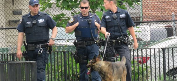 Teen Boy Stabbed in Ozone Park Playground