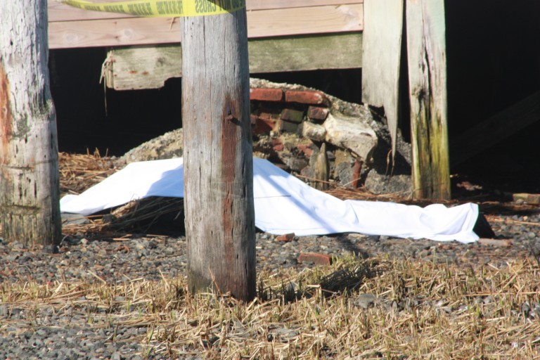 Body Washes Up In Broad Channel