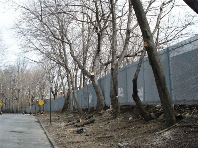CURES Set to Beautify Shaler Ave
