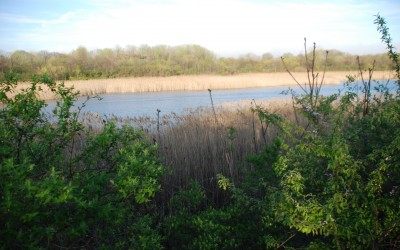 Ridgewood Reservoir Renovations to Begin