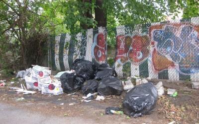 Dumping Hits Ozone Park