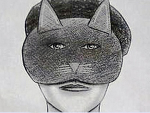 'Catwoman' Sentenced to 10 years