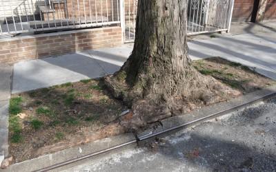 Ulrich Funds Sidewalk Repairs
