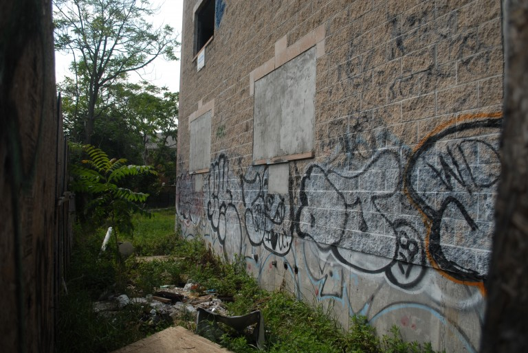 Squatters Terrorize Ridgewood Neighborhood