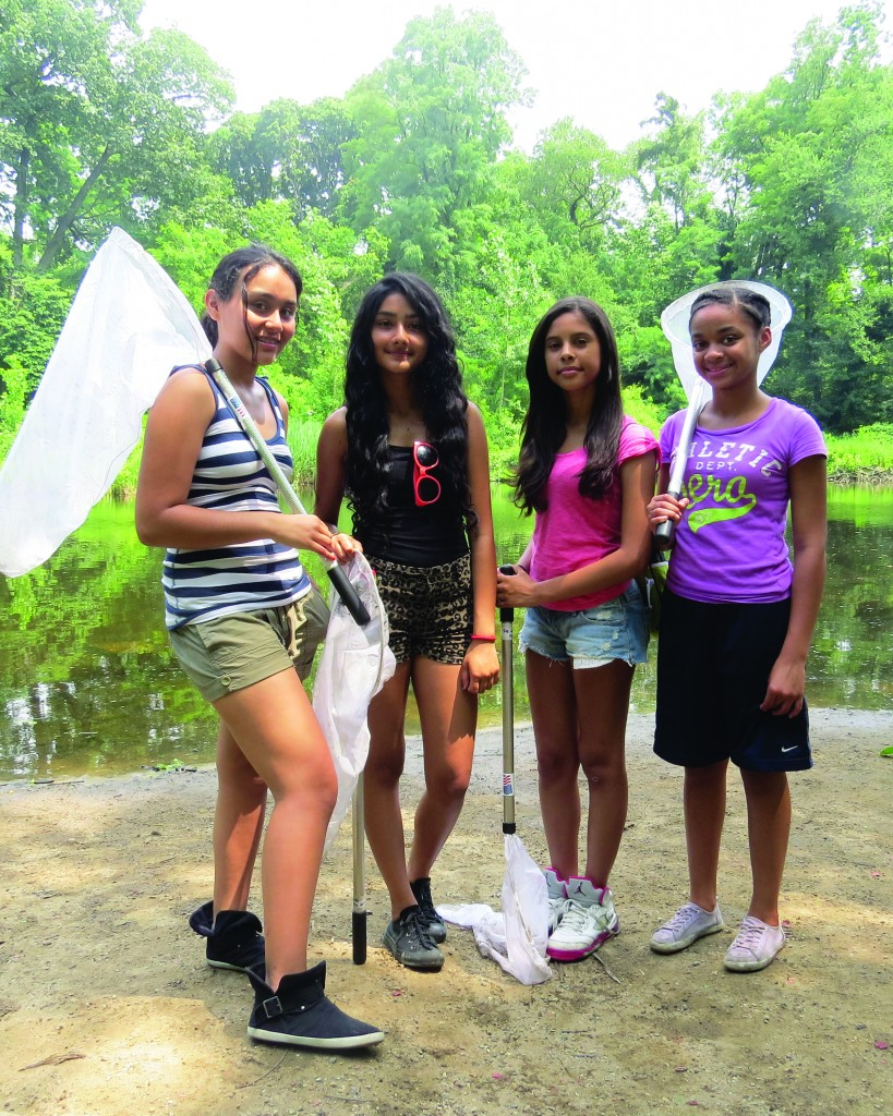 """Tiffany Nunez, left, Ashwini Neupane, Azrielle Urena, and Trinity Young, all middle school students from Long Island City, caught dragonflies in Forest Park's Strack Pond this week as part of the City Parks Foundation's """"Green Girls"""" program. Anna Gustafson/The Forum Newsgroup"""