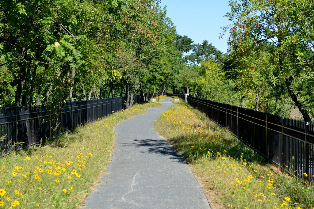 The city's project to improve the Ridgewood Reservoir included new lighting, wheelchair-accessible entry points and new fencing.