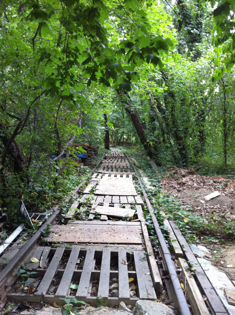 The train line that once ran from the Rockaways to Rego Park has become overgrown and fallen into disrepair over the past five decades. File Photo