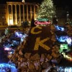Christ the King tree lighting 6