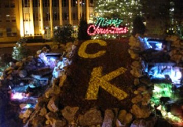 Christ the King Kicks Off Christmas Season with Tree Lighting Ceremony