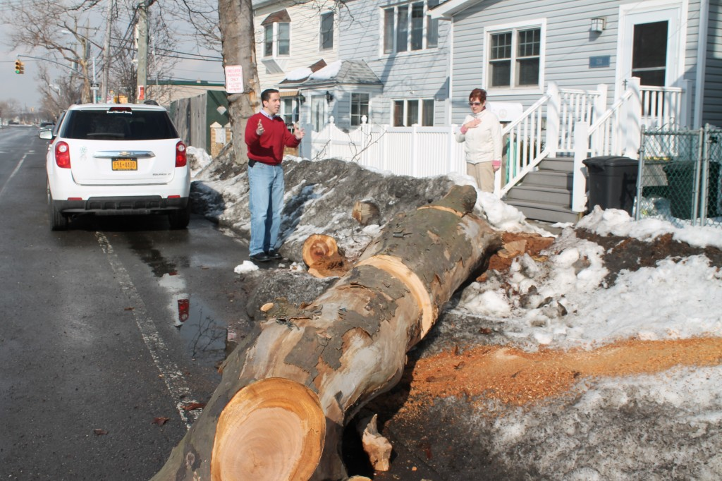 Assemblyman Phil Goldfeder, left, recently sent a letter to Acting Commissioner of the Department of Design and Construction David Resnick urging him to expedite a street repaving and sidewalk repair project that would rehabilitate damaged roadways and allow the city Parks Department to replant trees damaged by Superstorm Sandy. Photo courtesy NYS Assembly