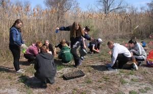 Students planting milkweed at Jamaica Bay Refuge.  Photo courtesy Don Riepe.