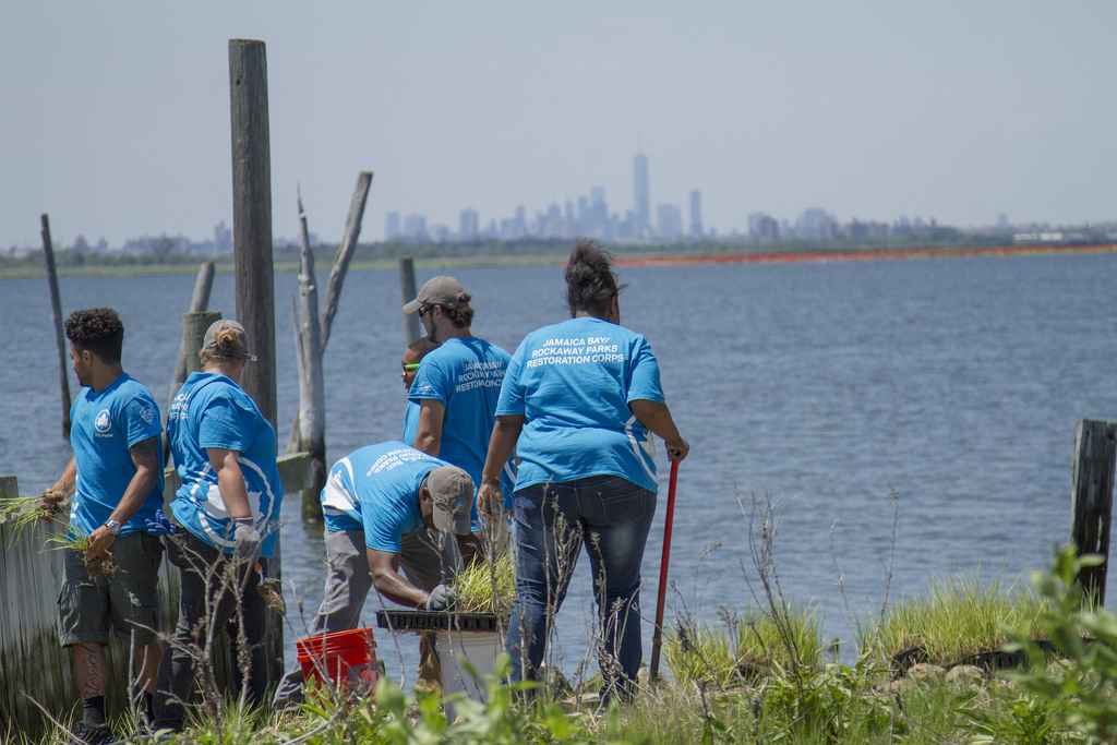 Student volunteers joined U.S. Department of the Interior Secretary Sally Jewell to plant marsh grass along Jamaica Bay in Broad Channel on Monday.  Photos courtesy U.S. Department of the Interior