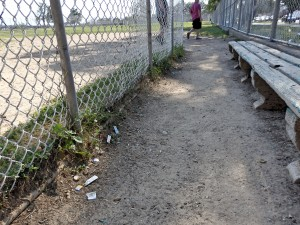 Howard Beach natives have complained that maintenance crews have not done enough to keep Charles Park nice.  Photo by Phil Corso