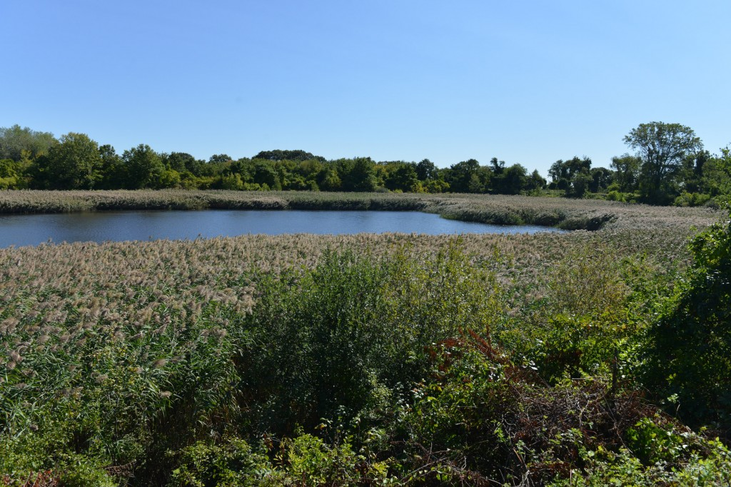 Residents are concerned over the future of the Ridgewood Reservoir.  File Photo