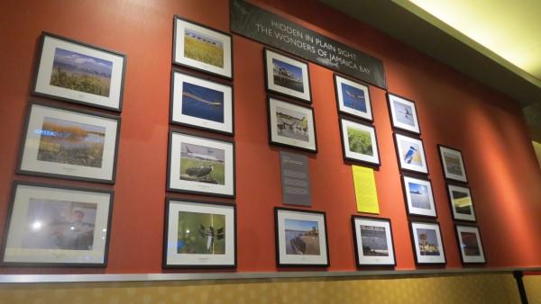 New Casino Exhibit Spotlights 'Wonders of Jamaica Bay'
