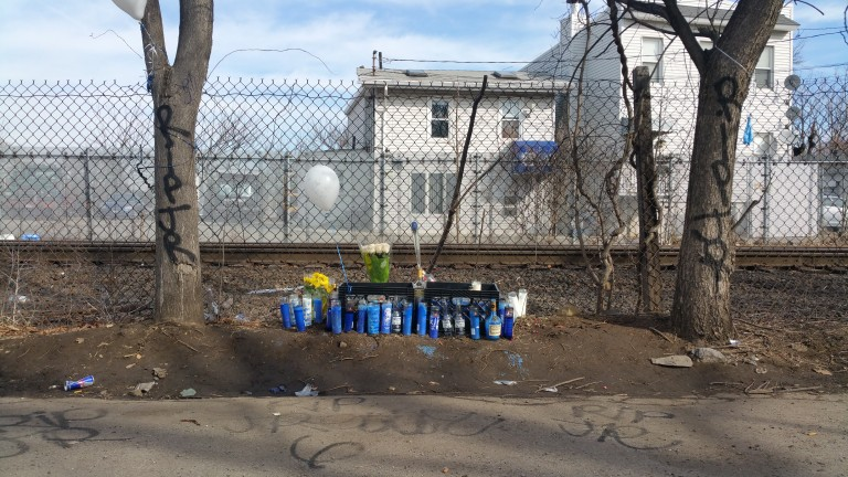 Ozone Park Teen Allegedly Lured Man into Murder Trap