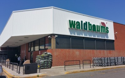 Waldbaum's Watch