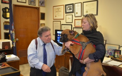 Queens DA Establishes Animal Cruelty Prosecutions Unit