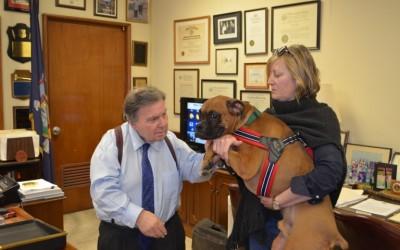 Queens DA Establishes Animal Cruelty Prosecutions Unit