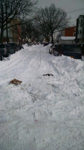 102nd Avenue in Ozone Park on Monday. Photo Courtesy of City Councilman Eric Ulrich