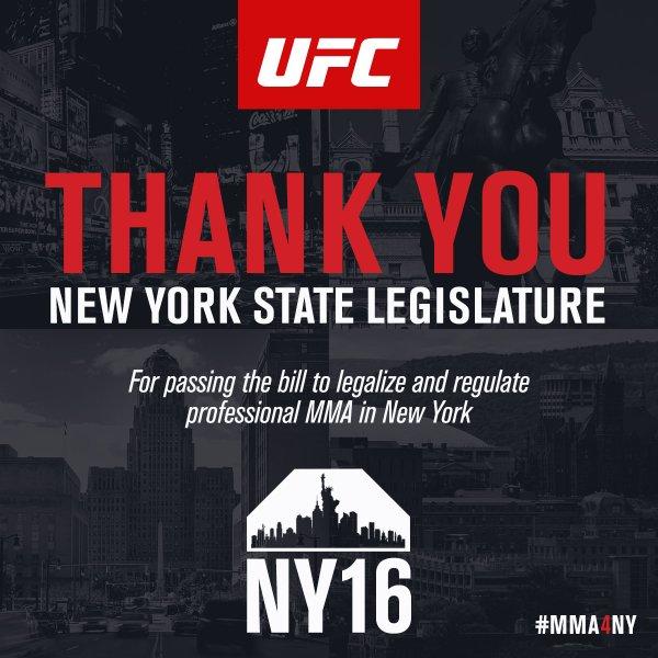 Assembly Vote Knocks out Ban on Professional Mixed Martial Arts
