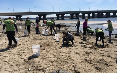 Volunteers Tidy up Broad Channel Crab Habitat