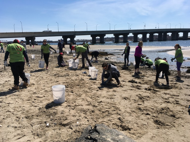 Volunteers Tidy up Broad Channel Crab Habitat