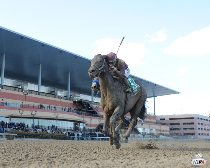 NYRA Board, Lawmakers Look to Return Racing Assoc. to Private Status; Goldfeder & Co. urging Andy to approve not-for-profit move