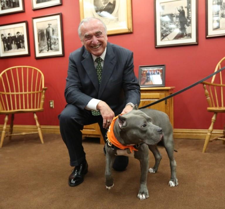City Celebrates Take Your Dog to Work Day