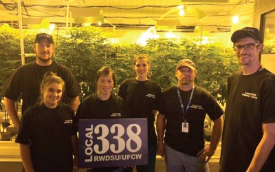 Retail Workers Union, Medical Marijuana Manufacturer Ratify Historic Contract