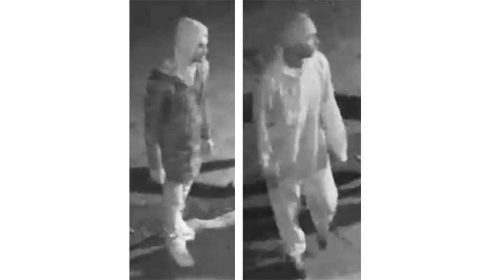 Investigators Hunt Gang  of Four in Ozone Park  Attack and Robbery