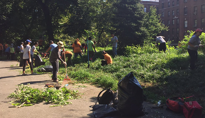 NYC Residents Volunteering at a High Rate: Study