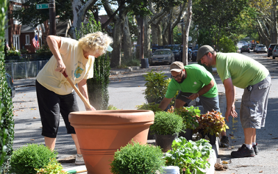Ulrich Teams with Borough Botanical Garden for Tudor Village Beautification Project