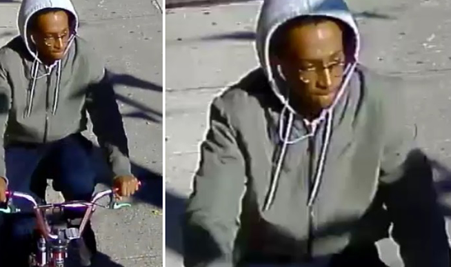 Thief Swipes Cell Phone from Vic's Hand  in South Richmond Hill