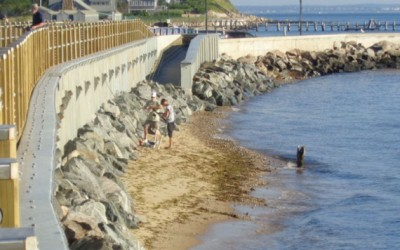 Army Engineers Issue Coastal Storm Risk  Management Options