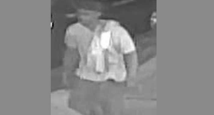 Cops Hunt Ozone Park Rape Creep