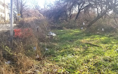 Ozone Park Civic Decries Unkempt Areas Rife with  Evidence of Illegal Dumping