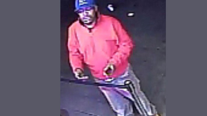Cops Search for South Ozone Park Car Thief