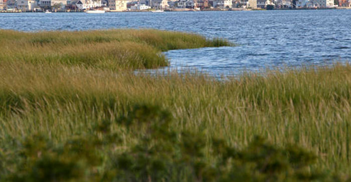Bill Extends Protection of Jamaica Bay