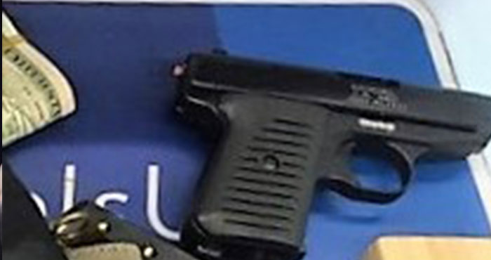 Man Carrying Gun Nabbed at JFK