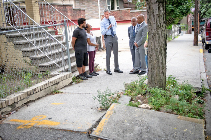 City to Stop Issuing Violations to Homeowners  for Damage Caused by Street Trees