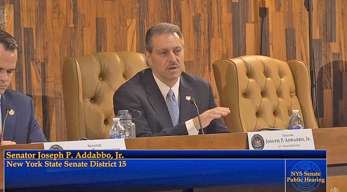 Mental Health Programs 'Critical' for Veterans: Sen. Addabbo