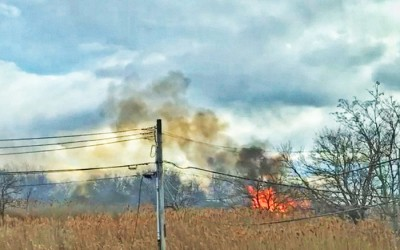 Beach Blaze: Bravest Battle Brush Fire  in Spring Creek Park