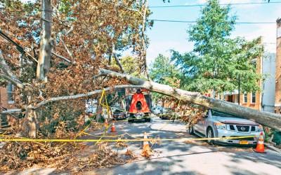 Senators Send Letter to Con Edison Demanding Answers about Response to Tropical Storm Damage