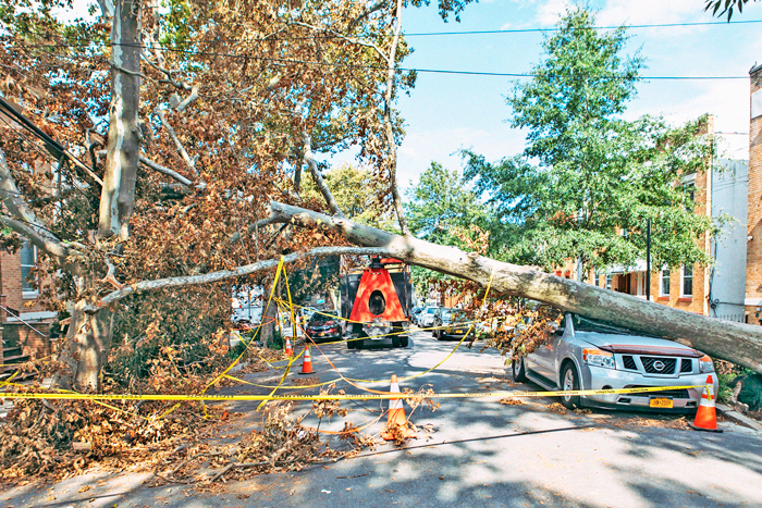 Senators Send Letter to Con Edison Demanding Answers about Response to Tropical Storm Damage