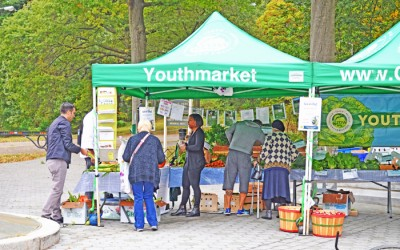 Popular Richmond Hill Farmers' Market  Set to Return to Forest Park