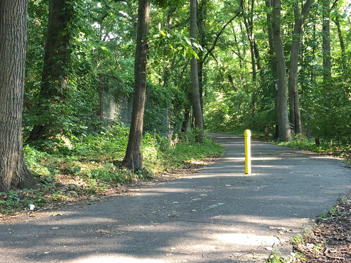 File Photo Cardenas allegedly attacked the 51-year-old victim as she walked a trail inside Forest Park.