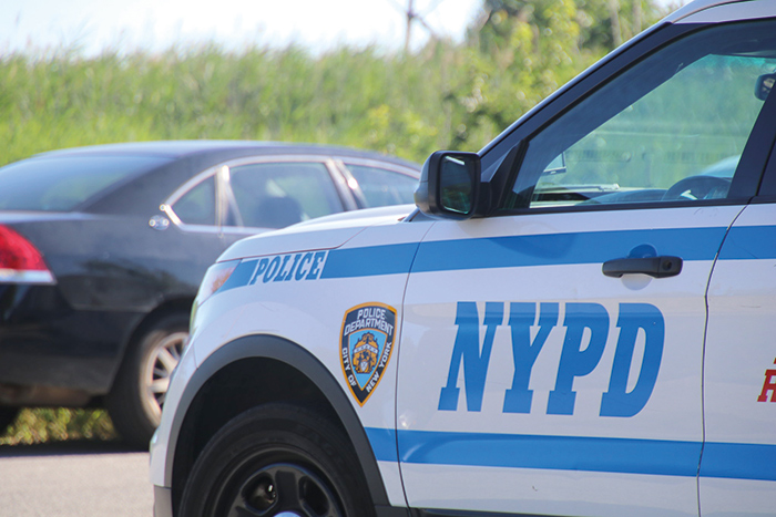 Armed Assailants Raid Woodhaven Home, Tie up Residents